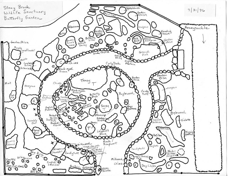 Original Stony Brook Butterfly Garden