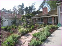 Landscaping Ideas For Front Yard No Grass