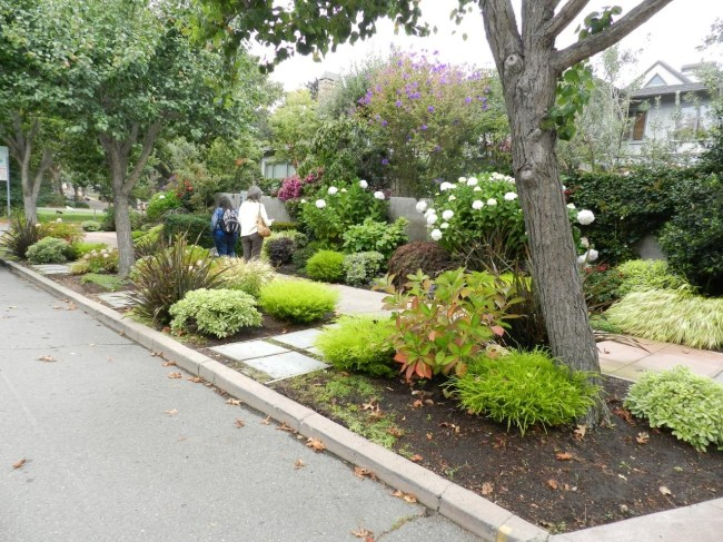 Landscaping For Sidewalks | Hgtv with Front Sidewalk Landscaping Ideas