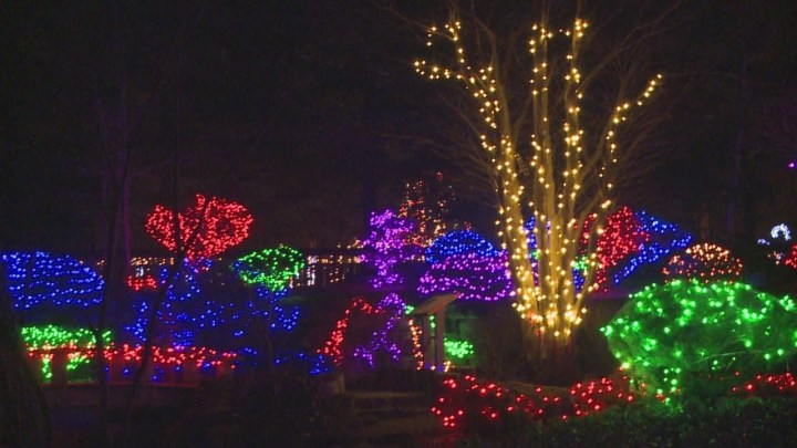 Rotary Gardens Light Show 12-13-15 - Youtube in Rotary Garden Light Show Janesville Wi