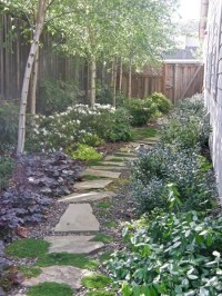 Landscaping Ideas For Narrow Side Yard - Garden Design