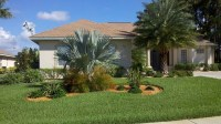 Landscaping Ideas For Front Yard With Palm Trees