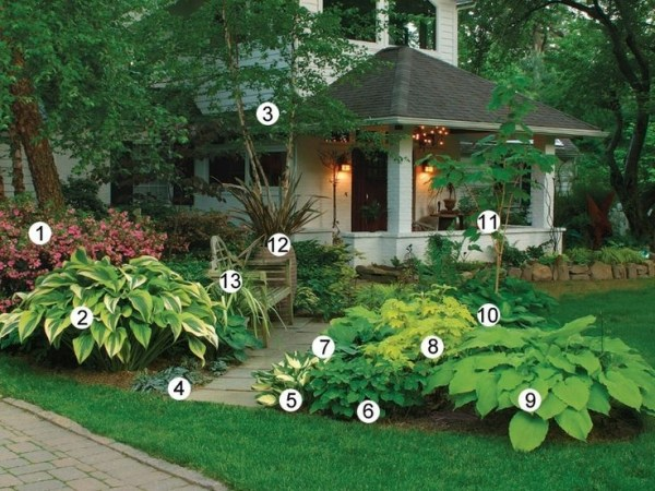 landscaping ideas front yard