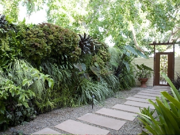 10 Best Driveway/side Yard Path - Ideas We Both Like Images On intended for Tropical Landscape Ideas For Small Side Yard