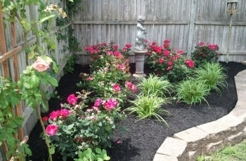 Landscaping With Roses Pictures - Wow - Image Results | Rose in Backyard Rose Garden Ideas