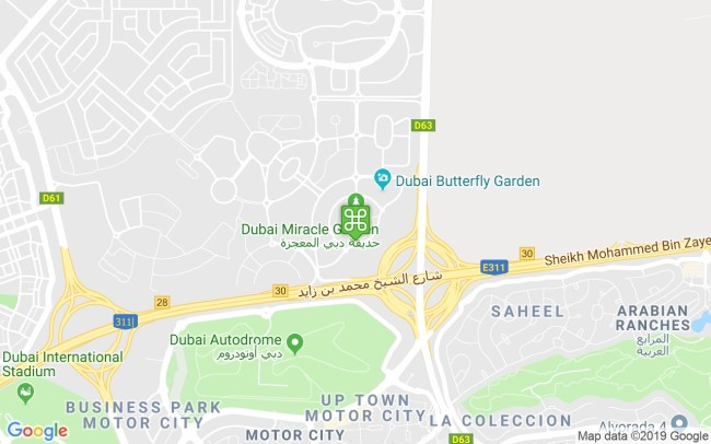 Dubai Miracle Garden - Our Guide Includes Timings, Location, Map for Dubai Miracle Flower Garden Location Map