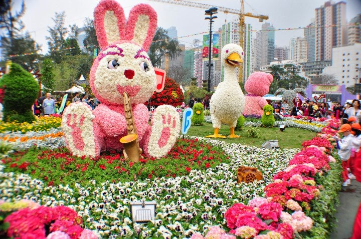 Essay Flower Festival In Zoological Garden throughout Flower Festival In Zoological Garden Essay In English