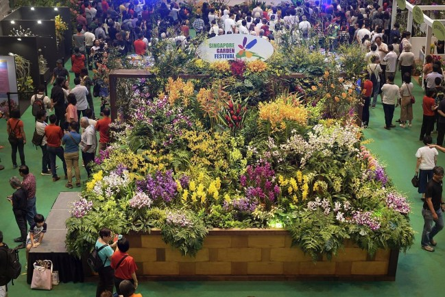 Singapore Garden Festival Returns In July, With 2 New Separate with Asian Garden Flower Festival 2018