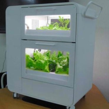 Hydroponic Gardens as Mainstream Kitchen Appliances