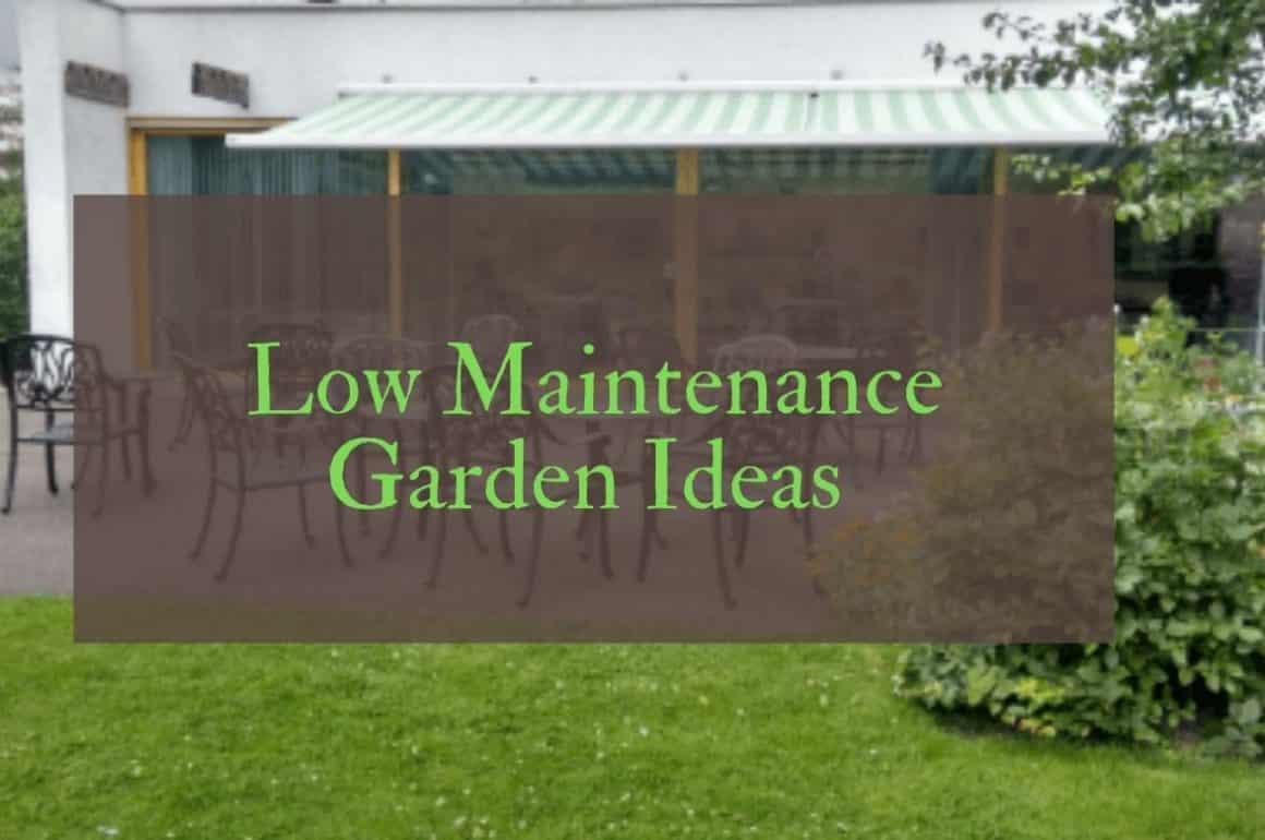 Low Maintenance Garden Ideas For Small Uk Garden Spaces