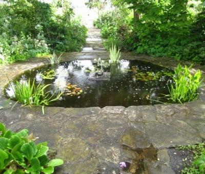 Anne Latreille Pond