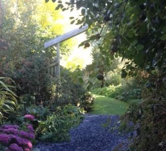 Wychwood Garden in early autumn, with wonderful flowering sedums