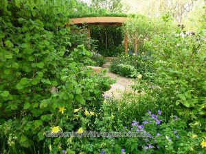 The natural country meadow style of the 'Rural Muse' garden, designed by Adam Frost, Chelsea Flower Show 2012
