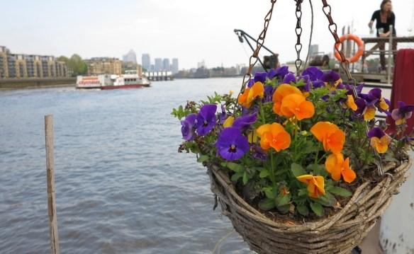 London Barge Gardens4079