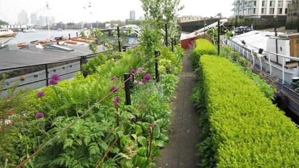 London Barge Gardens46