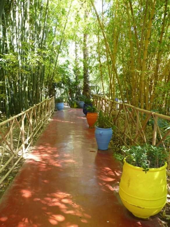Jardin Majorelle Aisle through bamboo