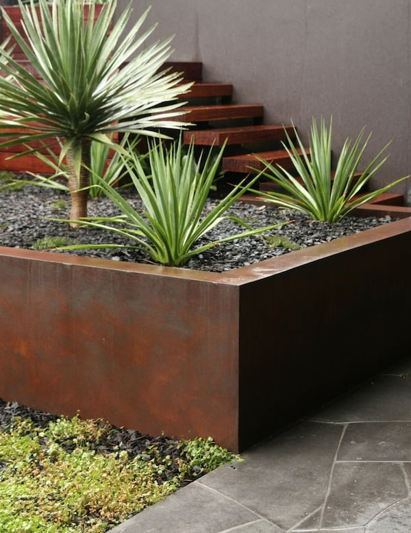 Using paint colour in your garden gardendrum for Cycas landscape design