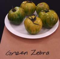 Green Zebra at the Diggers Club taste test and Royal Botanic Gardens, Sydney