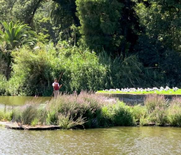 Punting on Ornamental Lake 2014 006
