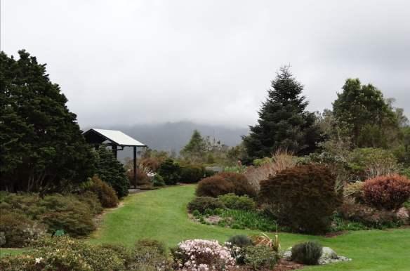 Pukeiti Gardens NZ Photo Helen McKerral