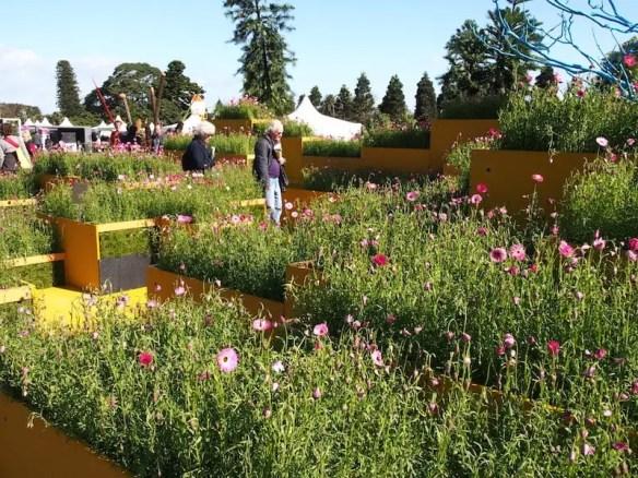 AGSS 2014 Welcome Garden - Mt Annan section, by Botanic Gardens and Centennial Parklands