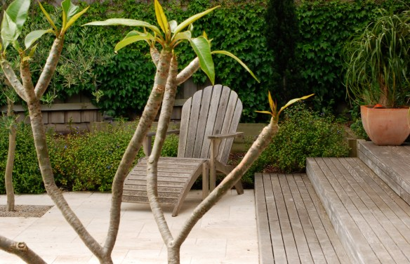 Melbourne Garden DesignFest 2014. Garden design by Stephen Read. Chair and plumeria