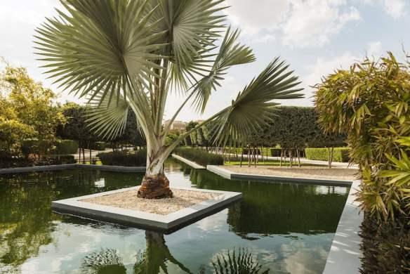 Bismark Palms. Design by Kamelia Zaal at Albarari