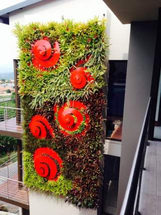 Greenwall and art. Garden design Leon Kluge. South Africa
