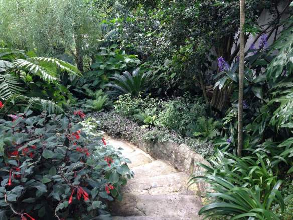 Christopher Owen Landscape Design's Vaucluse Garden. Photo: Janna Schreier