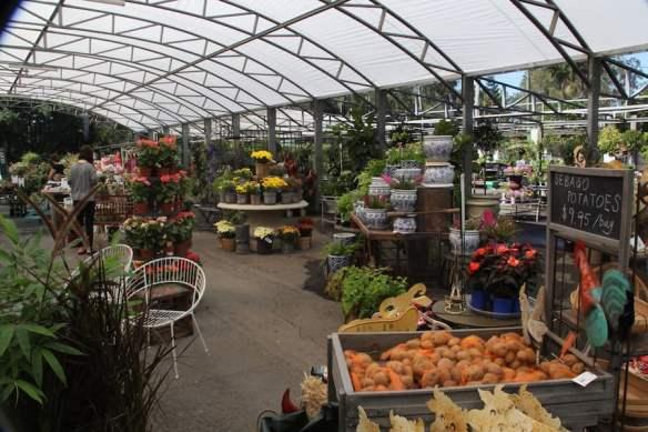 A view through Brookfield Garden Centre