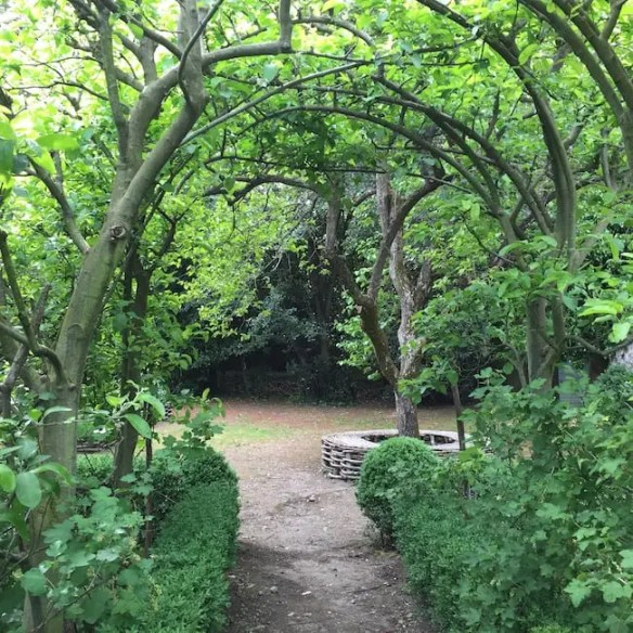 and under arching trees