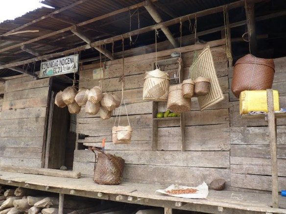 Embera baskets in the Choco bioregion