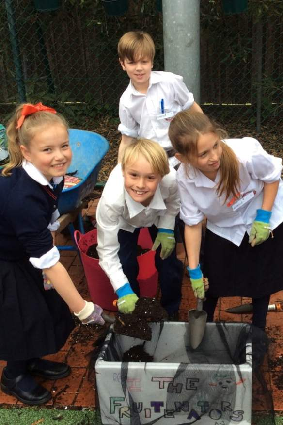 Sacred Heart Primary School making wicking box