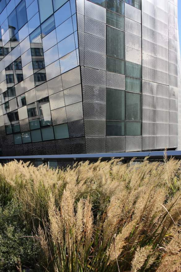 Prairie grasses and the striking contemporary architecture complement each other