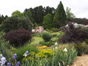 Hillandale Garden and Nursery Yeholme NSW