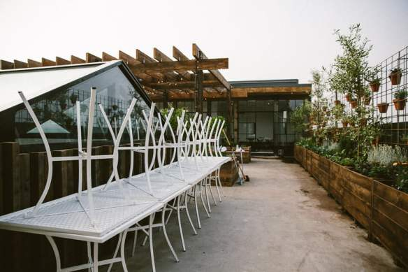The Cellar Door. Planting design Phillip Withers. Photo Stuart Cox