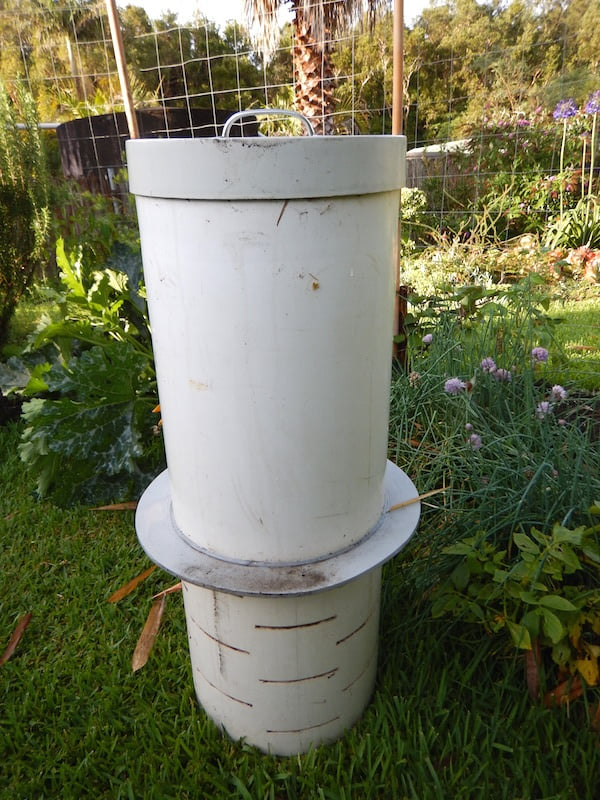 In-ground worm farms for the time-poor gardener - GardenDrum