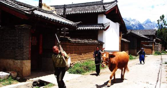 Naxi village in Lijiang