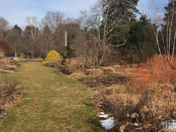 Bressingham Garden, MA - views along a garden path.
