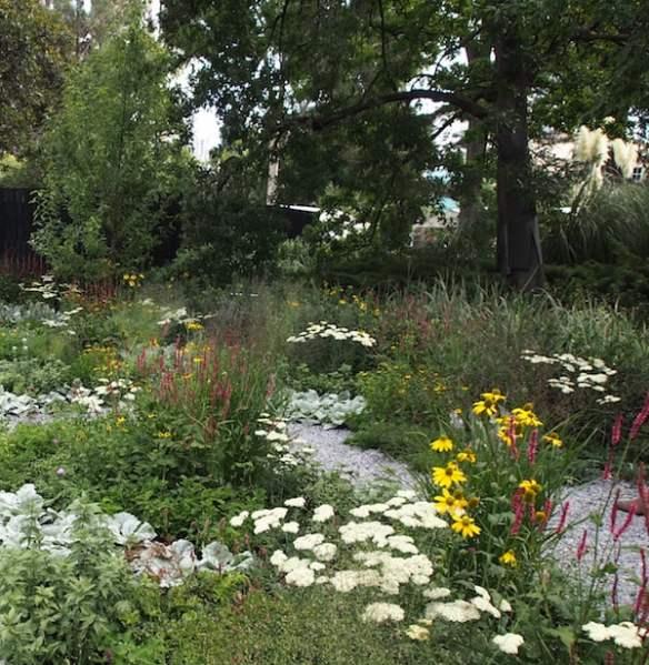 Reflection Ian Barker Gardens - intermingled planting design