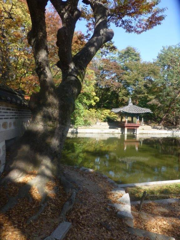 Aeryeonji Pond