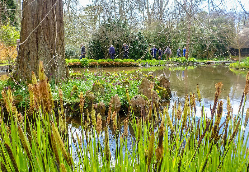 Garden review longstock park water garden hampshire - Back to the roots water garden review ...