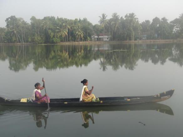Morning light on the backwaters