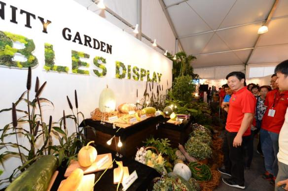 Minister Wong viewing winning entries of Community Garden Edibles Competition. Photo courtesy Singapore Garden Festival