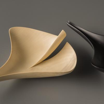 Ginkgo leaf forms by Grant Vaughan