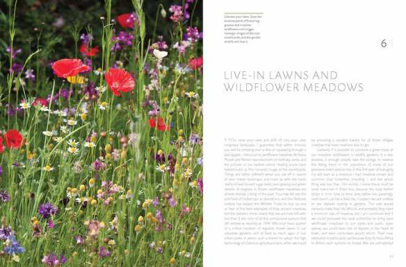 RHS Companion to Wildlife Gardening p92-93