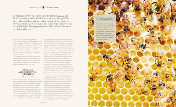 The Bee Friendly Garden by Doug Purdie pp60-61