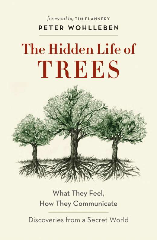 the-hidden-life-of-trees-cover