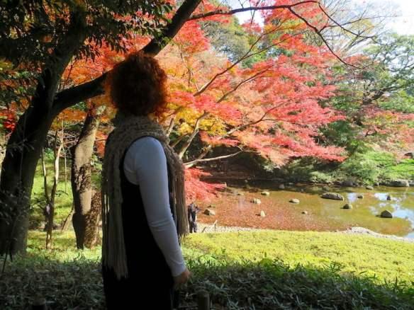 Enjoying the Koishikawa Korakuen garden in Tokyo
