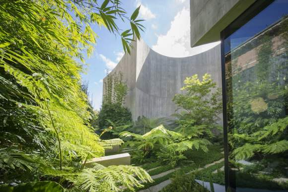 The south facing fernery, a soft contrast with the butch architecture